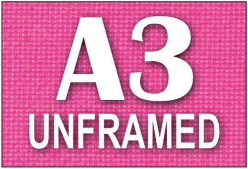 A3 Unframed Canvas