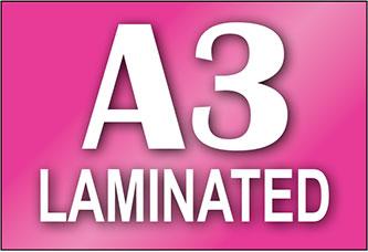 A3 Laminated Print